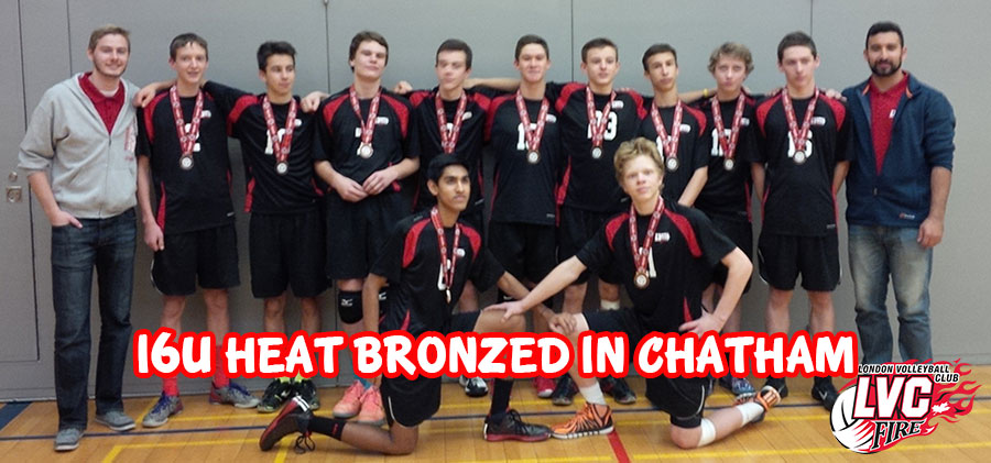 16U Heat Bronzed in Chatham
